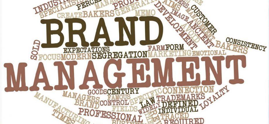 principles of brand management