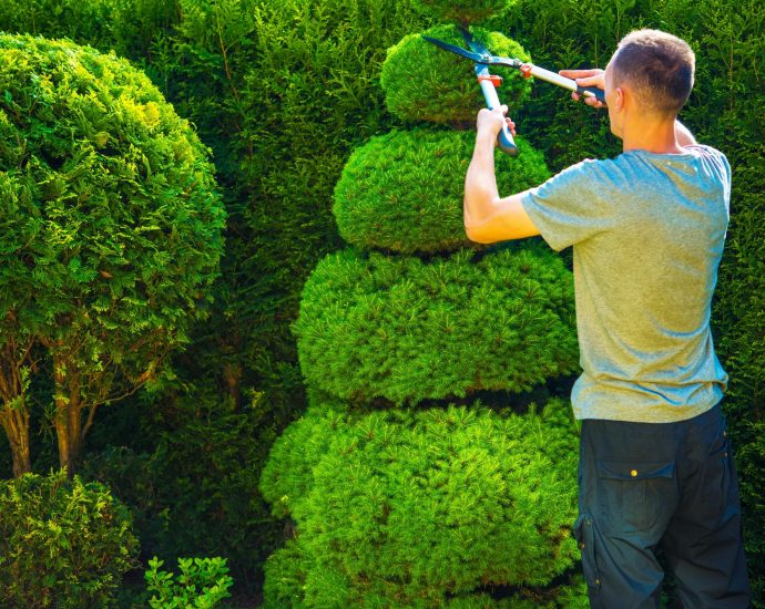 Tree-cutting services for residents