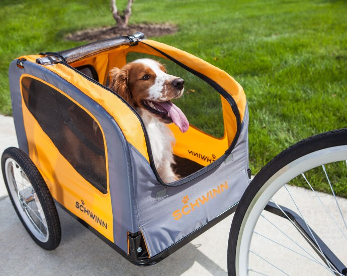 buy-pet-bicycle