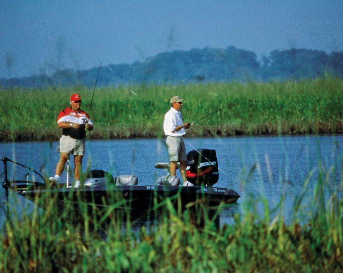 Best-fish-finders